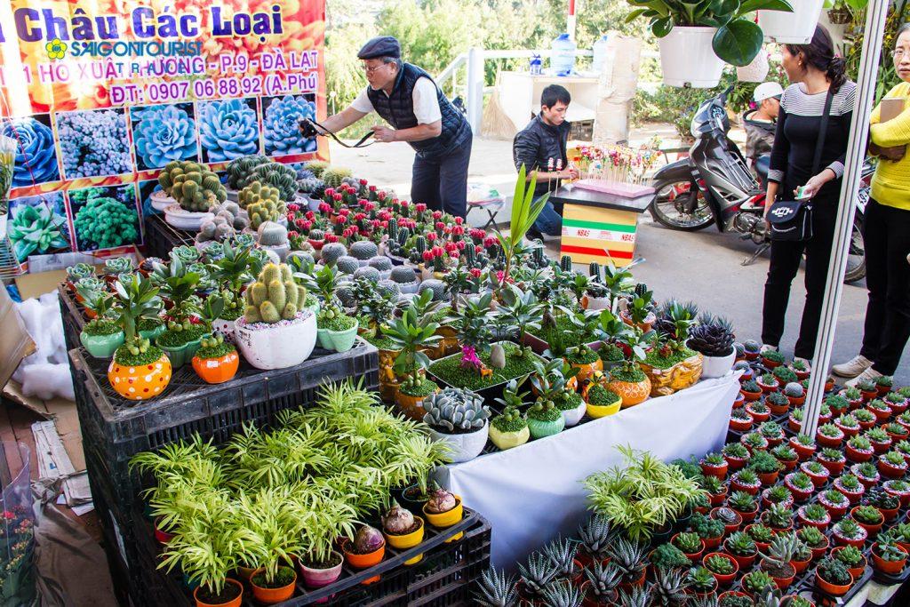 Khu trưng bày rau, hoa thương mại (hình minh họa)