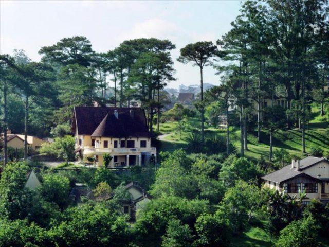 biệt thự rừng thông